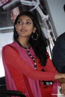 Kajal Photos (35)
