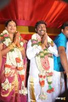 Vijay Vasanth Marriage Photos Vijay Vasanth Wedding Reception Photos (14)