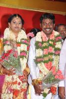 Vijay Vasanth Marriage Photos Vijay Vasanth Wedding Reception Photos (34)