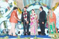 Jaswant Bhandari Son's Marriage Wedding Reception Photos Pics