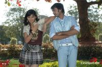 Allam Vellulli telgu movie photos, stills, pics (14)