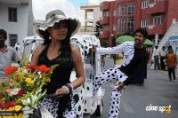 SP Entertainments Prod No 6 telugu movie photos,stills