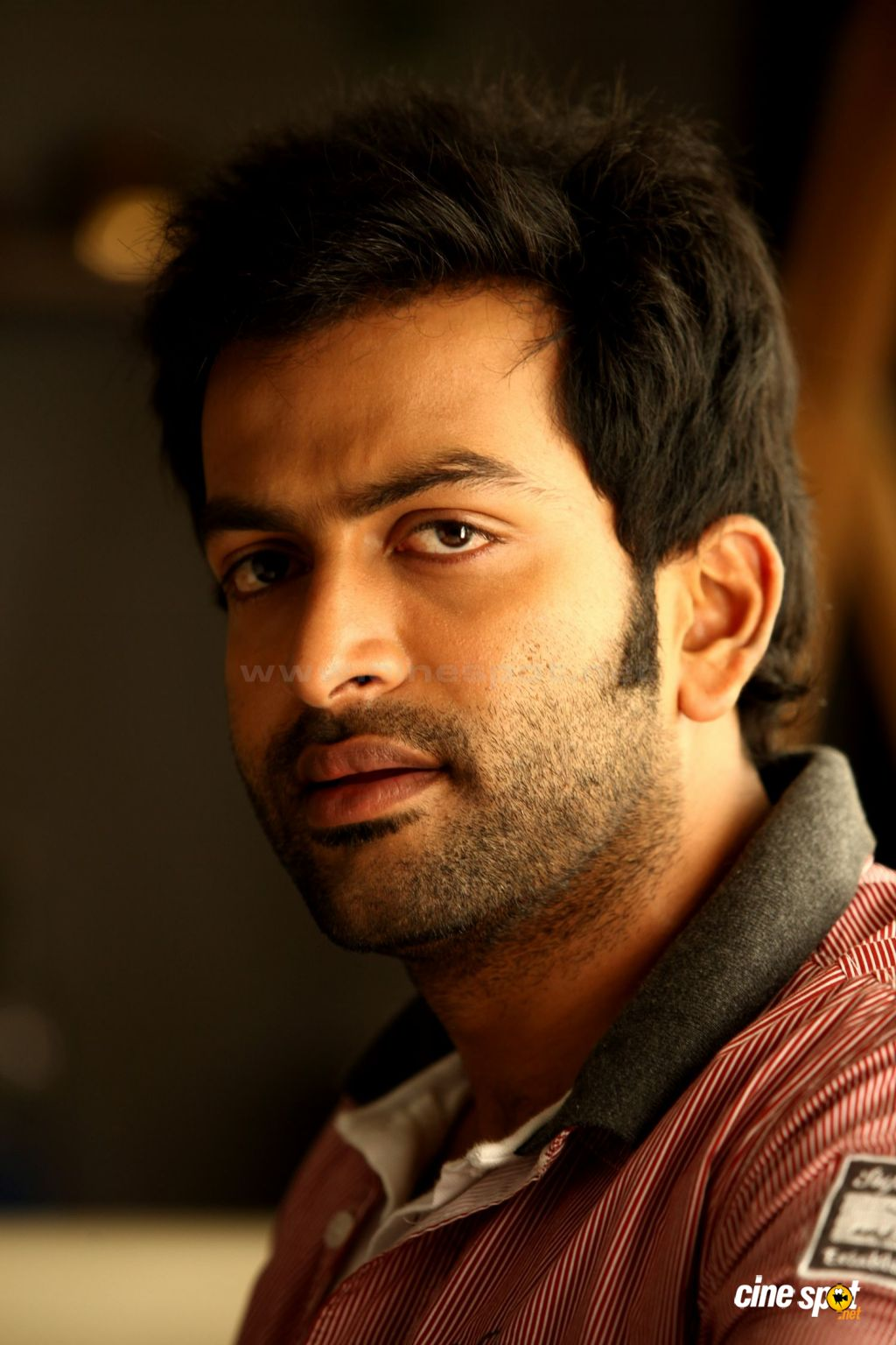 prithviraj actor photo...