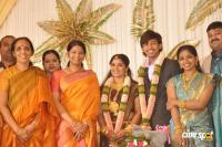 Raj Tv MD Son Marriage Reception photos