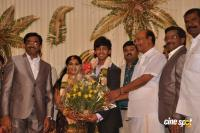 Raj Tv MD Son Marriage photos (66)