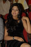 Malishka Telgu Actress Hot Sexy Photos, Pics (13)