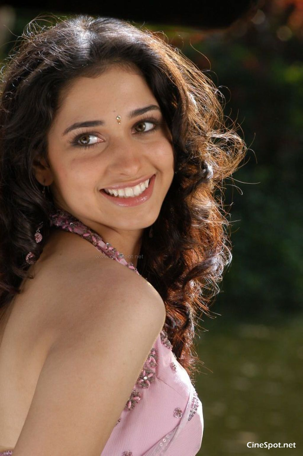 tamanna south actress hot spicy photos (15)