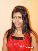 Navanitha south actress photos,stills