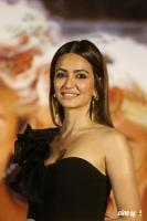 Kriti Kharbanda Actress Photos