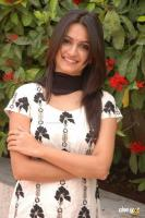 Kriti Kharbanda South Actress Photos,Stills (35)
