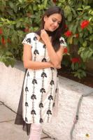 Kriti Kharbanda South Actress Photos,Stills (36)