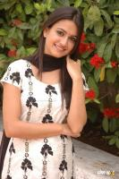 Kriti Kharbanda South Actress Photos,Stills (39)