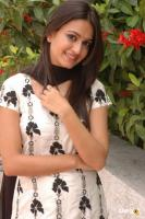 Kriti Kharbanda South Actress Photos,Stills (41)