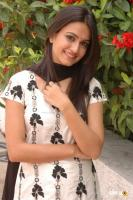 Kriti Kharbanda South Actress Photos,Stills (42)