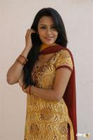 Priya South Actress New Photos, Stills (36)