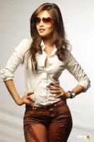 Riya Sen south actress photos,stills