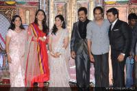 Karthi wedding reception (3)