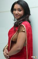 Vaishali Tamil actress photos pics