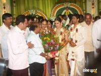 Sridevi Marriage Photos (22)
