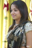 Trisha @ Sridevi Marriage Photos