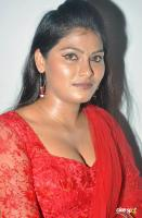 Hema Jelloju  actress photos pics