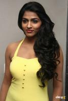 Dhansika Tamil Actress Photos Stills