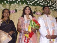 Meena Marriage Reception Photos (20)