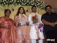 Meena Marriage Reception Photos (26)