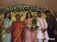 Meena Marriage Reception Photos (3)