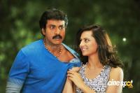 Poola Rangadu Telugu Movie photos pics