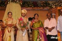 Sivaji Family Wedding Reception (23)