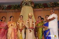 Sivaji Family Wedding Reception (27)