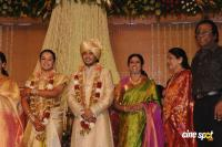 Sivaji Family Wedding Reception (28)