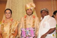 Sivaji Family Wedding Reception (29)