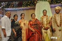 Sivaji Family Wedding Reception (3)