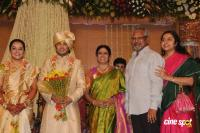 Sivaji Family Wedding Reception (30)