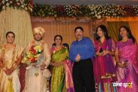 Sivaji Family Wedding Reception (32)