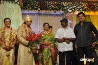 Sivaji Family Wedding Reception (38)