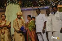 Sivaji Family Wedding Reception (5)
