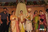Sivaji Family Wedding Reception (50)