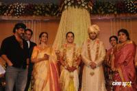 Sivaji Family Wedding Reception (53)