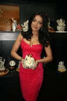 Celina Jaitley inaugurates World of Silver (13)