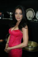 Celina Jaitley inaugurates World of Silver (22)