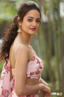 Shanvi Actress Photos pics