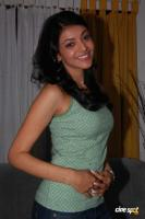 Kajal Agarwal Actress New Photos (77)
