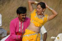 Narasimharaju Telugu Movie Photos Stills