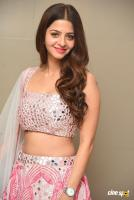 Vedhika South Actress New Photos, Stills