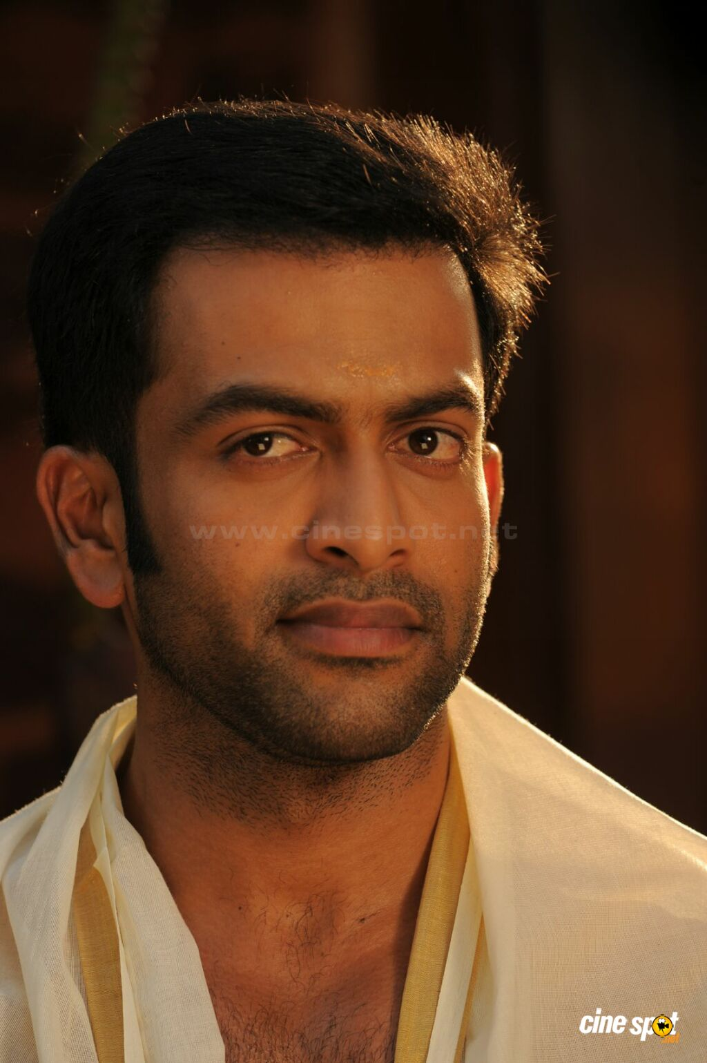 prithviraj sukumaran movies list
