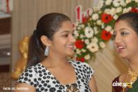 Gopika Marriage Reception Photos (96)