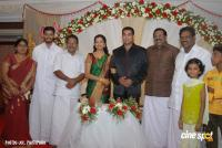 Gopika Marriage Reception Photos